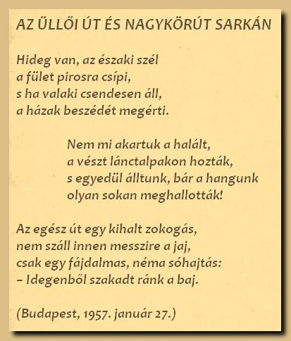 a-nagykorut-sarkan_0127