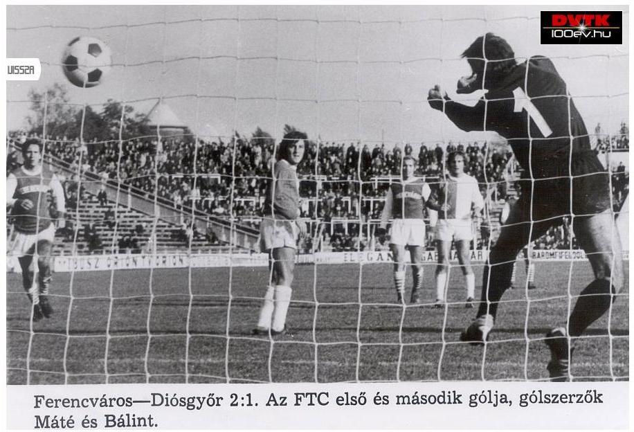 19741019-dvtk